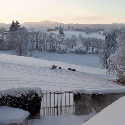 Uitzicht b&b natuur winter sneeuw
